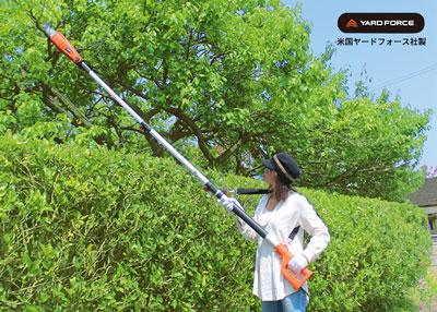 高枝切り電動チェーンソーで木を切ってる写真