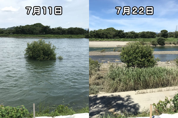 瀬田川の水位偏移